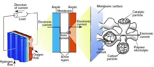 电子从外电路流向